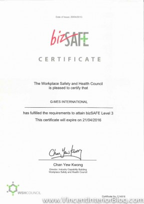 G-MES International award certification-2